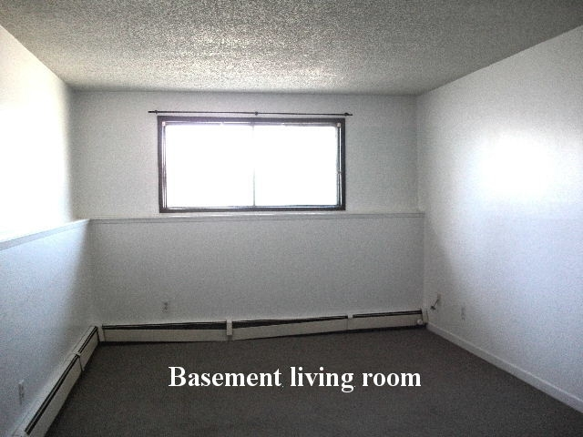Living room in a basement suite